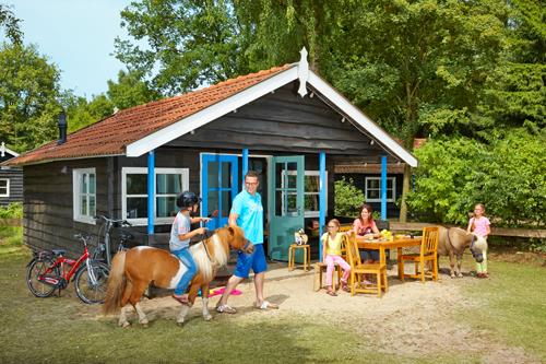 Het Vakantiehuisje2