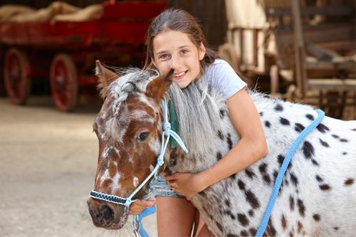 Pony reserveren2